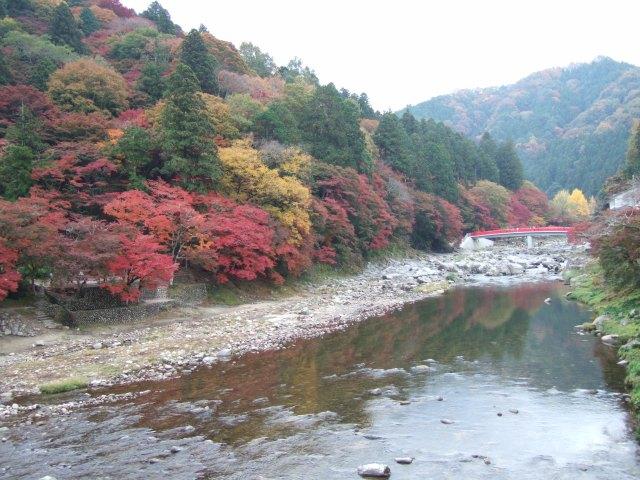 Fall 2009, Asuke, Japan
