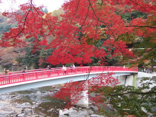 Asuke, Japan, Fall 2009