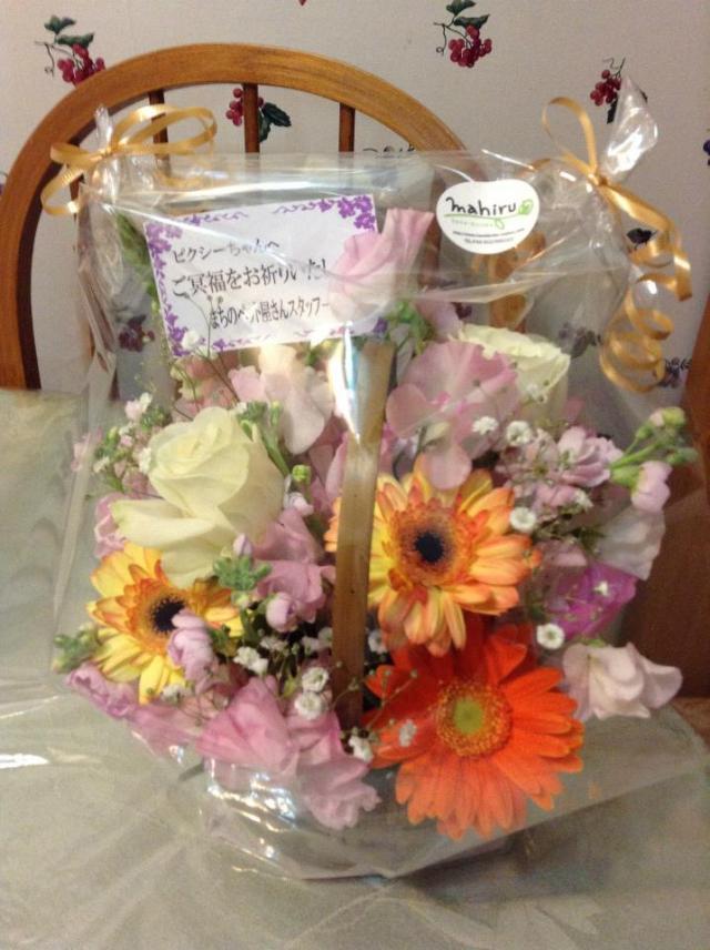 Pixie's flowers