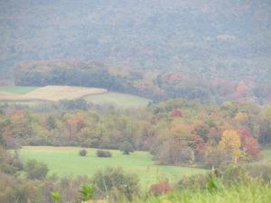Fall PA 2013-28