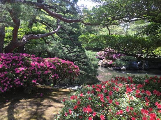 Kyoto_2017_2.JPG